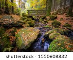 """The """"Silberbachtal"""" in Autumn in the """"Teutoburger Wald"""", Horn-Bad Meinberg, Detmold, Germany"""