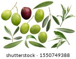 set of olive fruits and leaves  ... | Shutterstock . vector #1550749388