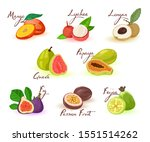 exotic fruits assortment with... | Shutterstock .eps vector #1551514262