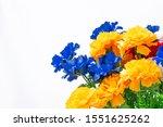 Floral Multicolored Bright...