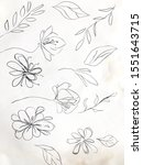 Vintage Hand Drawn Flower....