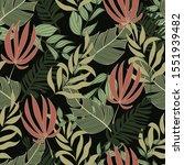 original summer seamless... | Shutterstock .eps vector #1551939482
