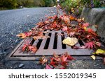 Flooding Threat  Fall Leaves...