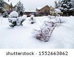 Snowy Cottage Garden. Cottage...