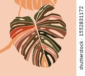 tropical monstera leaves in a... | Shutterstock .eps vector #1552831172