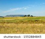 Fields Of Sunflowers  Eastern...