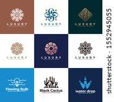 luxury abstract logo design...   Shutterstock .eps vector #1552945055