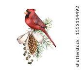 Watercolor Christmas...