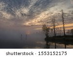 Sunrise At Foggy Swamp With...