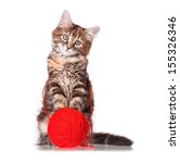 Stock photo cute kitten playing red clew of thread isolated on white background 155326346
