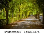 beautiful park alley in autumn | Shutterstock . vector #155386376