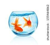 Goldfish In Aquarium Isolated...