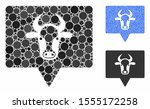 cow banner mosaic of small... | Shutterstock .eps vector #1555172258
