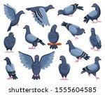 Pigeon Of Peace Cartoon Vector...