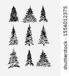 set of  graphic sketched winter ... | Shutterstock .eps vector #1556012375