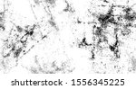 distressed black and white... | Shutterstock .eps vector #1556345225