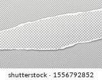 piece of torn  white realistic... | Shutterstock .eps vector #1556792852