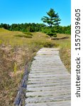 The leading lines of the wooden boardwalk take you into the distance at the Kohler Andrea State Park near Sheboygan and Wilson Wisconsin in the vertical view of the park in the late summer of August.