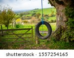Tire Swing  Tire And Rope...