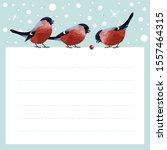 christmas bullfinch. winter...   Shutterstock .eps vector #1557464315