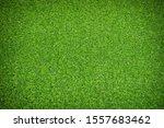 Artificial Green Grass Texture...