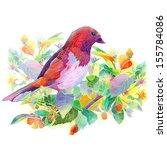 bird  berries  flowers and... | Shutterstock . vector #155784086