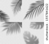 decorative set of transparent... | Shutterstock .eps vector #1557841622