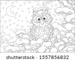 Thoughtful Owl Perched On A...