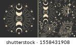 vector illustration set of moon ...   Shutterstock .eps vector #1558431908
