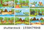 background scenes of animals in ...   Shutterstock .eps vector #1558479848