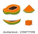 vector set of green papaya  ... | Shutterstock .eps vector #1558777598