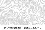 the stylized height of the... | Shutterstock .eps vector #1558852742