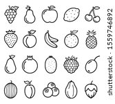 fruits vector line icons set.... | Shutterstock .eps vector #1559746892