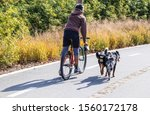 Man Rides Bike On Paved Trail...