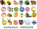set of cute cartoon animals  | Shutterstock .eps vector #156021626