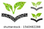 flora knowledge mosaic of... | Shutterstock .eps vector #1560482288