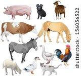 set of different farm animals.... | Shutterstock .eps vector #156056522