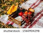 Set For Autumn Picnic. Basket...
