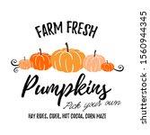farm fresh pumpkins vector...   Shutterstock .eps vector #1560944345