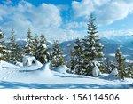 Winter Mountain Fir Forest...