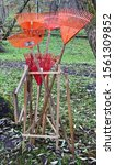 Small photo of Five plastic broom rake for collecting fallen leaves in the autumn garden