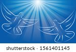 two dove in flight  pigeon and... | Shutterstock .eps vector #1561401145