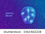 brain. digital brain on...