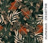 summer tropical seamless... | Shutterstock .eps vector #1561607548