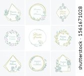 vector set of different floral...   Shutterstock .eps vector #1561671028