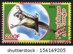 Small photo of CONGO - CIRCA 2010: stamp printed by Congo, shows Flying phalanger, circa 2010