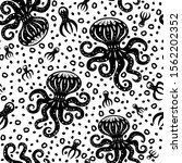 octopus hand drawn... | Shutterstock .eps vector #1562202352