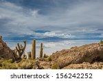incahuasi island  salar de...   Shutterstock . vector #156242252