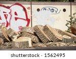 cut down tree in a city in... | Shutterstock . vector #1562495