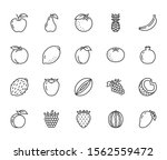fruits  berry flat line icons... | Shutterstock .eps vector #1562559472
